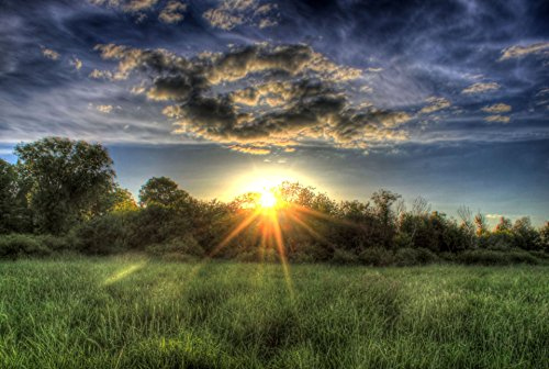 LAMINATED POSTER Fading Sun Over The Treetops Landscape Poster Print 24x 36
