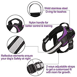 Bolux Service Dog Harness, Easy On and Off Pet Vest Harness, Reflective Breathable and Easy Adjust Pet Halters with…
