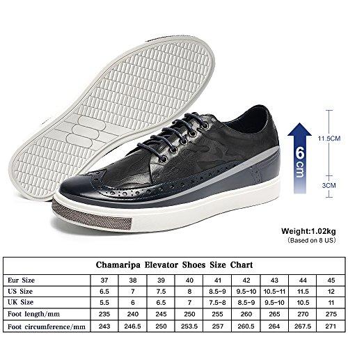 Chamaripa - Sneakers hombre