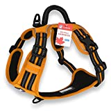 CUDDLY PET®, No Pull Dog Harness with Handle and Two Leash Attachments for Small Medium Large Dogs (Large, Orange)