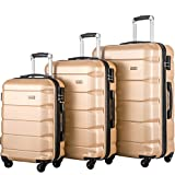 FLIEKS Luggages 3 Piece Luggage Set Spinner Suitcase (Champagne)