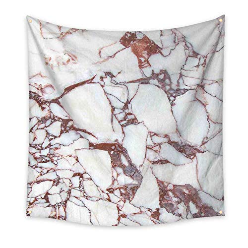 Marble Funny Tapestry Dolomite Rocks Pattern with Characteristic Swirls and Cracked Lines Abstract Art Quote Tapestry Beige Brown 47W x 47L Inch ()