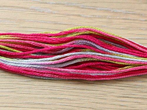DMC Coloris Stranded Cotton Embroidery Thread 4502 Camelia - per skein
