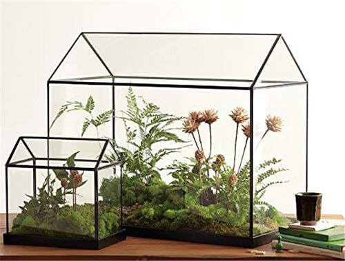 Muccus Cool Mini Handmade Tabletop Glass Green Houses,Small Arched Greenhouse Wardian Case Miniature Landscape Garden ()