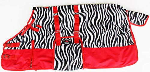 Miniature Weanling Donkey Pony Horse Foal Winter Blanket Bellyband Zebra 51943 ()