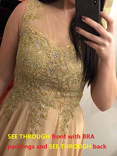 Prom Chiffon Long Back Crystals Evening Dresses Gold Line Sheer Plum A Lemai Lace Formal qvtzS