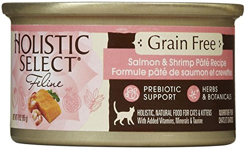 Holistic Select Grain Free Salmon & Shrimp Pate Recipe - 24x3 oz