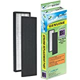 Germ Guardian FLT4850PT GENUINE True HEPA with Pet Pure Treatment Replacement Filter B for AC4800/4900 Series Air Purifiers