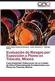 Evaluación de Riesgos Por Exposición a Plomo en Tlaxcala, México, Pedro Rafael Valencia-Quintana and Juana Sánchez A., 3847354221