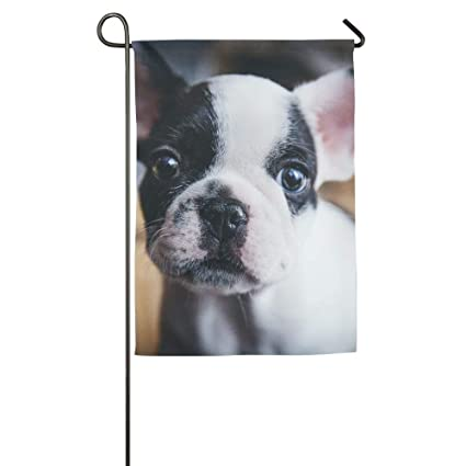 gagh garden flag double sided boston terrier festival holiday decoration for outdoor family party 125 x - Boston Terrier Outdoor Christmas Decoration