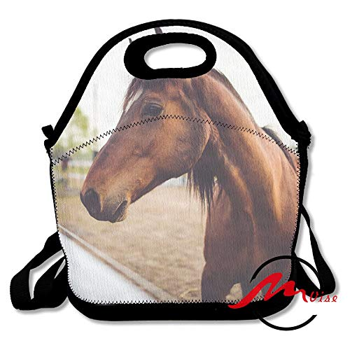 ZMvise Animal Brown Horse Lunch Tote Insulated Reusable Picnic Bags Boxes Men Women Youth Teens Nurses Travel Bag