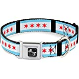 Buckle Down Chicago Flag Dog Collars
