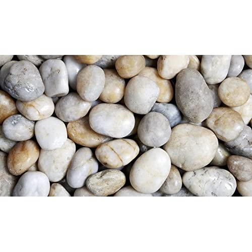 Superieur Round Wood Trading 3 5 Cm Polished Pebbles 1kg Natural White Decorative  Garden Plant Topper