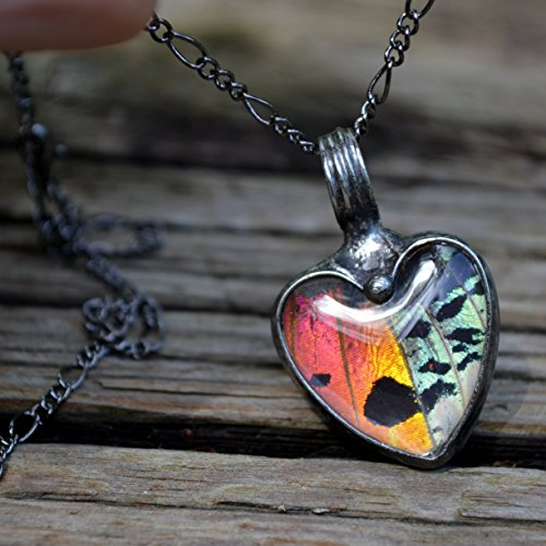 Beautiful Real Butterfly Necklace, Glass Heart, Butterfly Wing, Handmade Jewelry, Butterflies are Free (2766m)