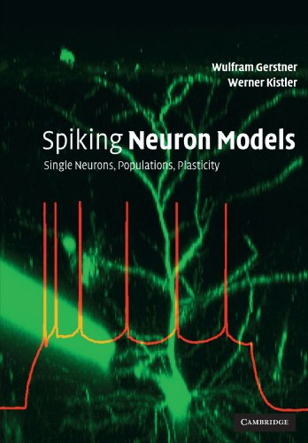 Spiking Neuron Models: Single Neurons, Populations, Plasticity