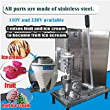 TX® fresh fruit frozen yogurt blending machine yogurt ice cream...