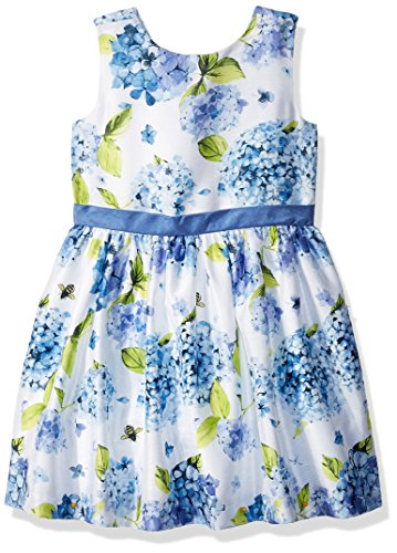 Gymboree Baby Girls Sleveless Floral Print Dress, Periwinkle Blooms, 4T