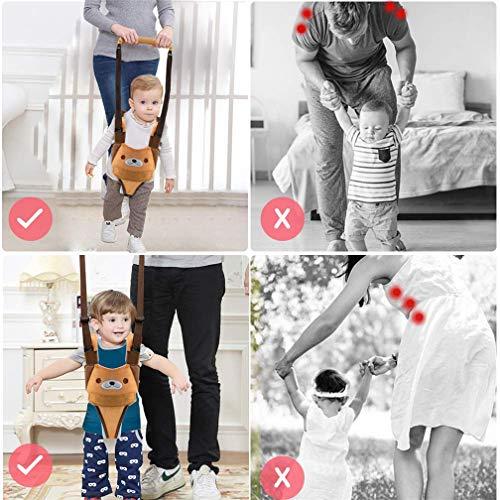 Amazon.com: Baby Walker, arnés de seguridad ajustable y ...