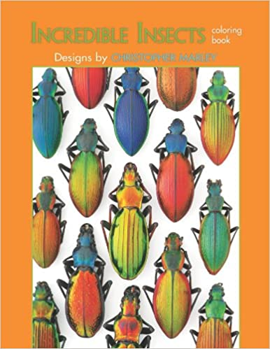 2017 christopher marley incredible insects sticker calendar