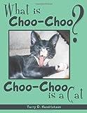 What Is Choo-Choo?, Terry D. Hendrickson, 1449090265