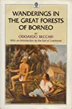 Wanderings in the Great Forests of Borneo, Beccari, Odoardo, 0195889231