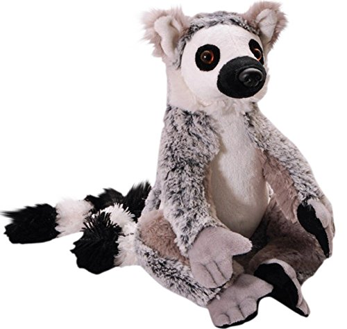 Monkey Lemur Animal - The Petting Zoo Plush Wild Onez Ring Tailed Lemur- 10 Inches with 17 Inch Tail