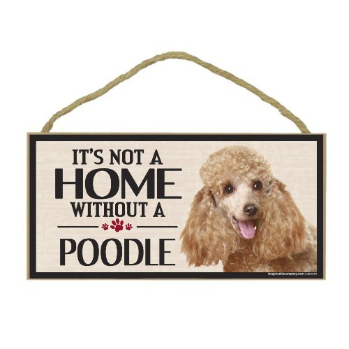Imagine This Wood Sign for Poodle Dog Breeds by Imagine This