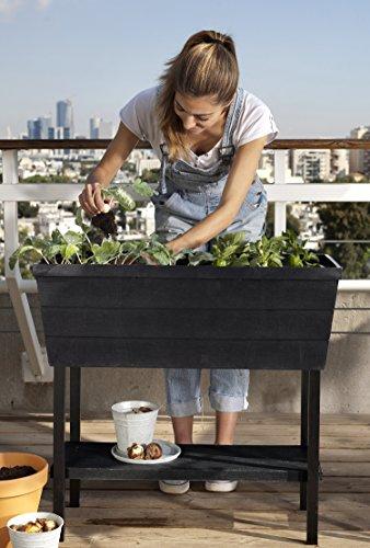 Keter Urban Bloomer 22.4 Gallon Resin Plastic Wood Look Elevated Raised Patio Garden Flower Planter Bed, Graphite