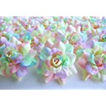 ICRAFY-24-Silk-Rainbow-Pastel-Tones-Roses-Flower-Head-175-Artificial-Flowers-Heads-Fabric-Floral-Supplies-Wholesale-Lot-for-Wedding-Flowers-Accessories-Make-Bridal-Hair-Clips-Headbands-Dress
