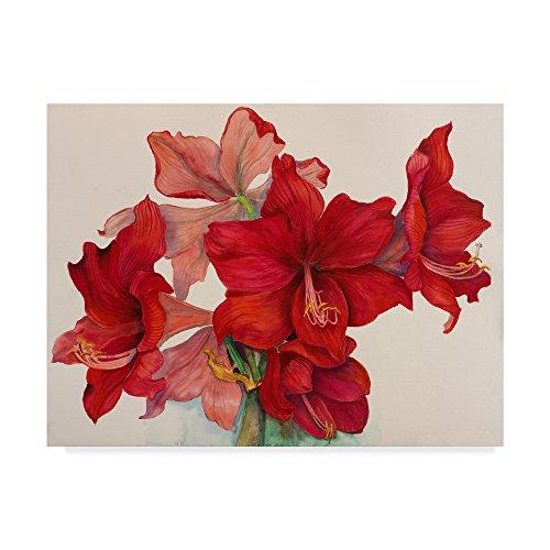 Holiday Amaryllis by Joanne Porter, 18x24-Inch