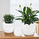 Plant Pots, Brajttt Flower Pots Planters Set of 3