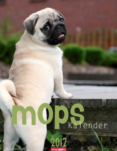 mops-kalender-2012