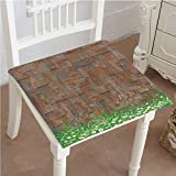 Mikihome Classic Decorative Chair pad Seat Antique Old Planks American Style Western Rustic Wooden,Small Grass and Daisies Cushion with Memory Filling 22''x22''x2pcs