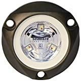 Lumitec 101436 SeaBlazeX Mini Spectrum LED Underwater Boat Light, Surface Mount, RGBW Full-Color Output