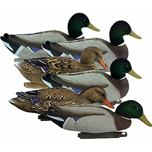 d Duck 6 Pack (Flocked Head) 17042 (Flocked Duck)