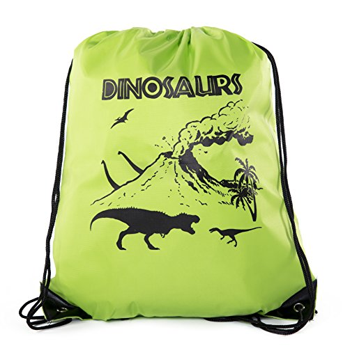 Goodie Bags for Kids   Drawstring Gift Bags with Logo for Bdays, Parties + More - Lime CA2500PTY Dinosaurs