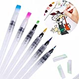 6 Pcs/Set Pilot Ink Pen for Water Brush Watercolor Calligraphy Painting Tool Set by UBOOMS