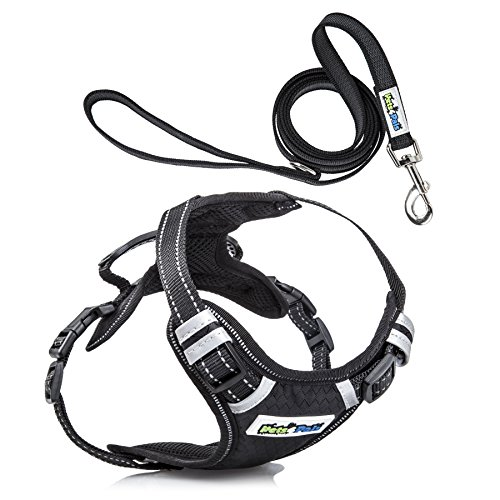 pets4pals Adjustable No Pull Reflective Harness Handle, D-Ring Leash Small Medium Large Sized Dog ()