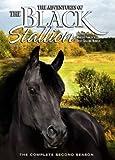 The Adventures of the Black Stallion: Season 2