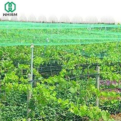 WHISM 4mx6m Nylon Garden Bird Preventing Netting Anti Bird Net for Fruit Trees Pond Balcony Bird Netting Orchard Predective Mesh