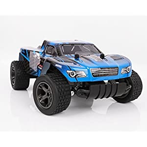 RC Cars, All Terrain Remote Control High-Speed Telecar, Offroad 2.4Ghz 2WD Remote Control Monster Truck, Best Christmas Gift for Kids and Adults(Blue truck)