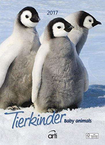 Tierkinder 2017 - Baby Animals, Tierkalender 2017, Posterkalender, Wandkalender, Fotografiekalender - 24 x 33 cm