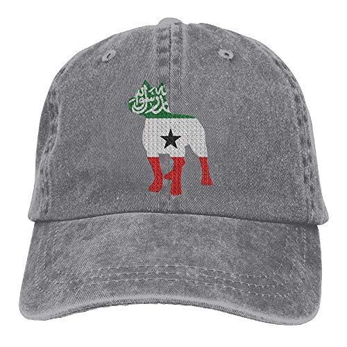 - DeReneletrc Unisex Patriotic Pitbull Somaliland Flag Vintage Jeans Baseball Cap Adjustable Dad Hat