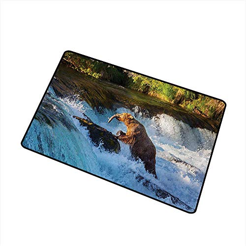 Waterfall Commercial Grade Entrance mat Image of Large Bear by a Rock in Alaska Waterfall Wildlife in Earth Art Print for entrances, garages, patios W19.7 x L31.5 Inch,Multicolor