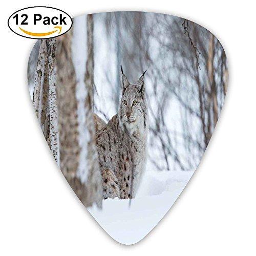 Newfood Ss European Lynx Snowy Cold Forest Norway Nordic Country Wildlife Apex Predator Guitar Picks 12/Pack Set