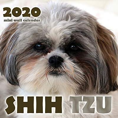 Shih-Tzu-2020-Mini-Wall-Calendar