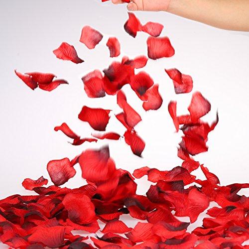 Review POAO Rose Petals, 2000pcs