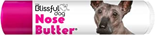 product image for The Blissful Dog Xoloitzcuintli Nose Butter