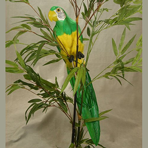 - Inspired By Nature Artificial Brightly Colored Feathered Parrot Bird with Attached Wire on Feet for Displaying and Embellishing