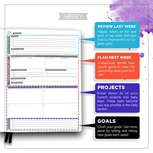 Panda Planner Pro - Best Daily Planner for Happiness & Productivity - 8.5 x 11'' Softcover - Undated Day - Guaranteed to Get You Organized - Gratitude & Goals Journal (Purple) by Panda Planner (Image #2)